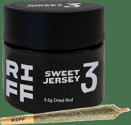 Riff - Sweet Jersey 3